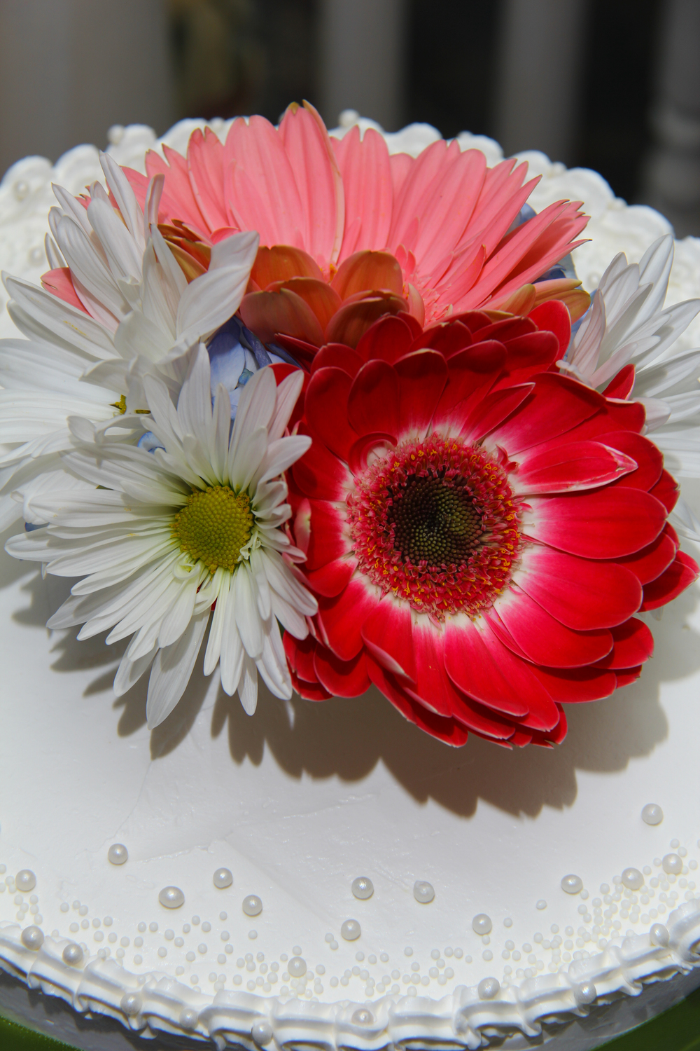 Elopement cake for two with daisies for a beach wedding