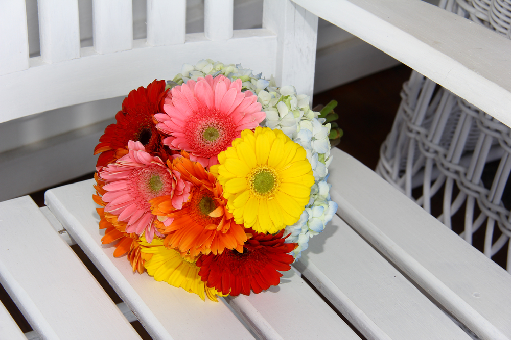 Tybee Island GA Gerbera Daisy Brides bouquet colorful