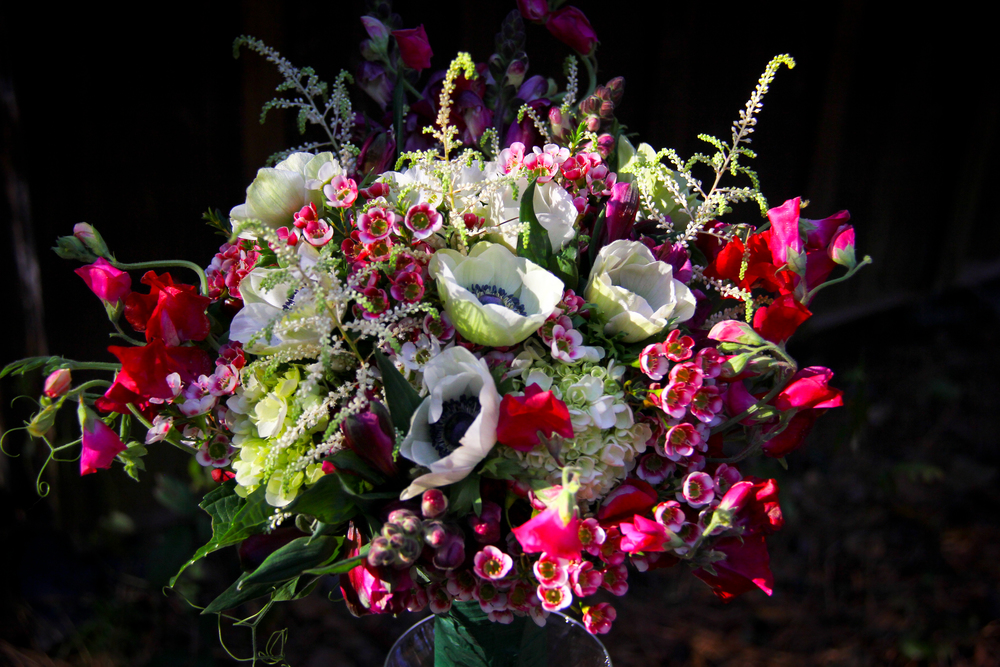 Bride's Bouquet of Wedding Flowers Anemone, sweet pea, snapdragon, waxflower, astible, hydrangea, pink, purple, fuchsia mix,