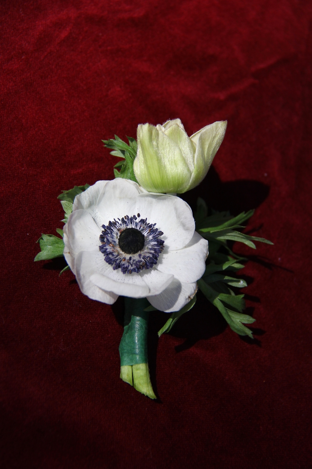 Boutonniere button hole, anemone, Savannah Wedding, flowers