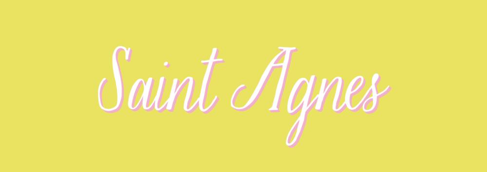 St-Agnes-Blog-Pink.png