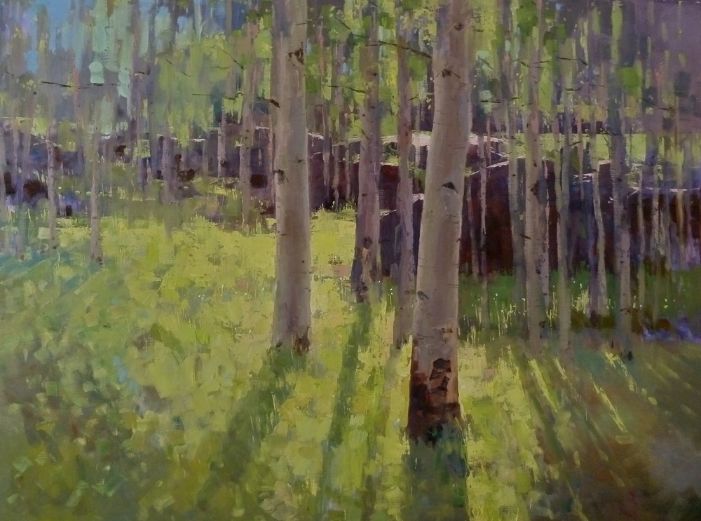 """Aspen Shadows"" 36x48, Oil."