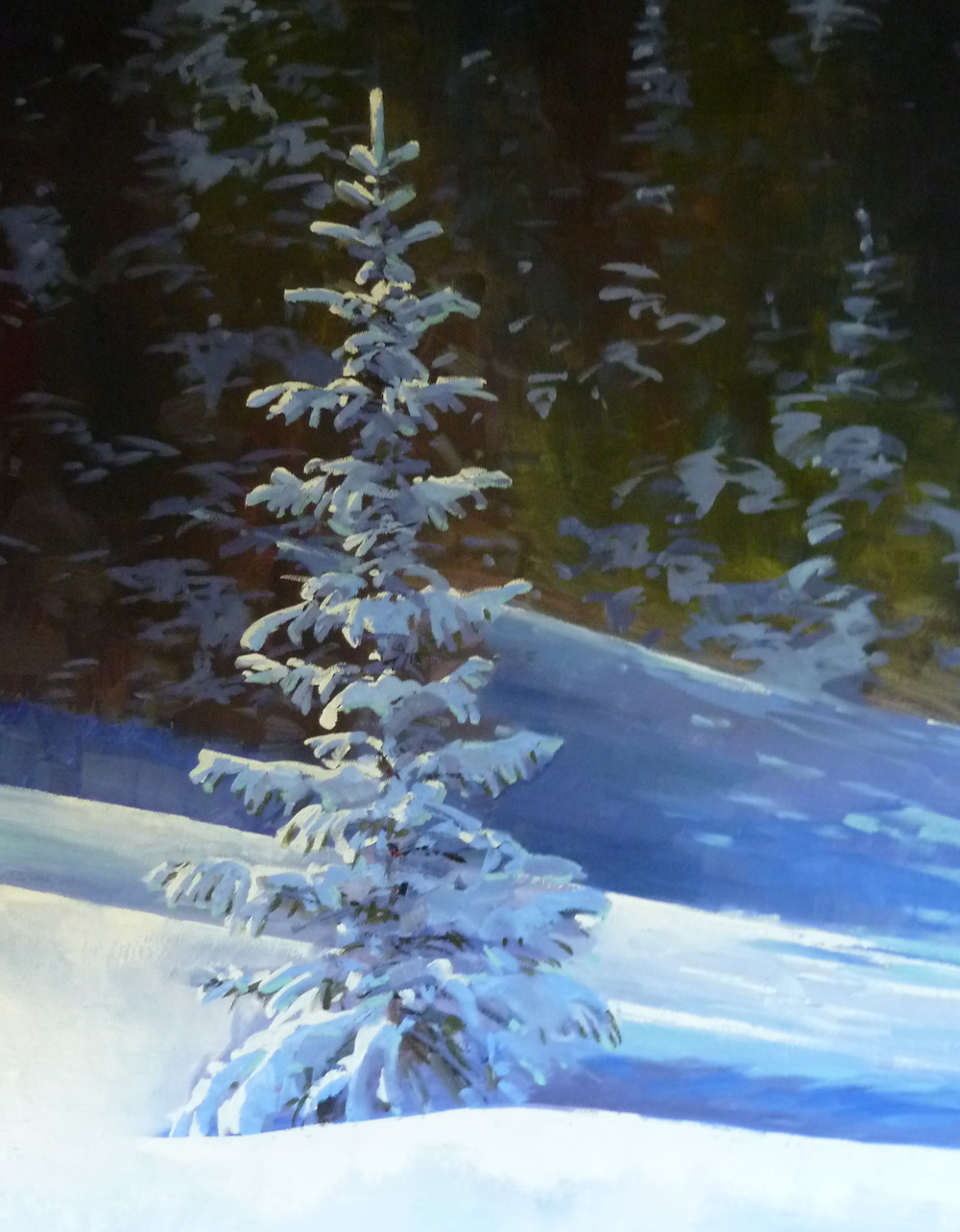 """Sparkling Fir"" 24x30, Oil."
