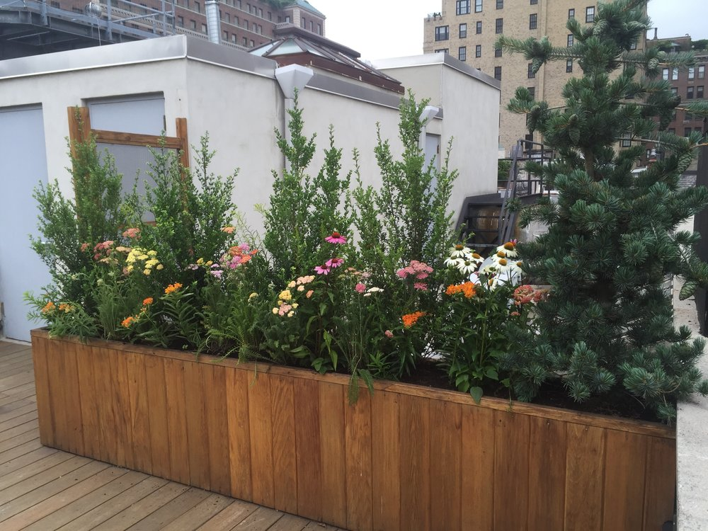 Upper East Side Terrace