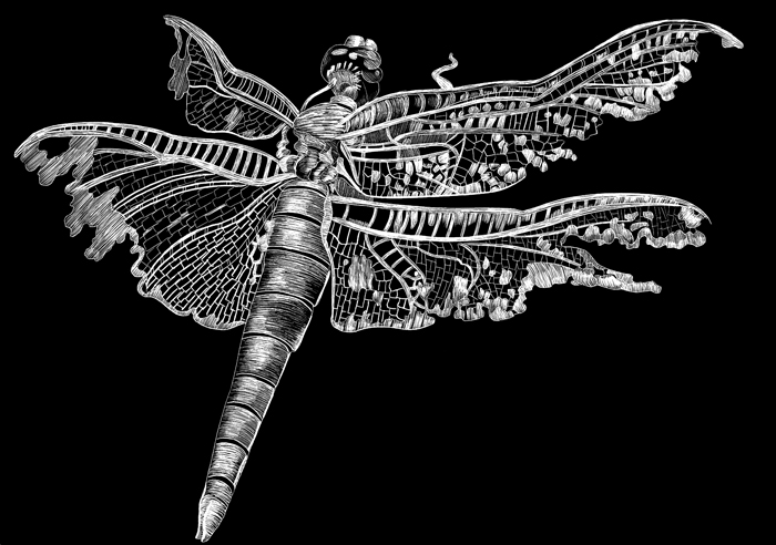 Dragonfly100.jpg