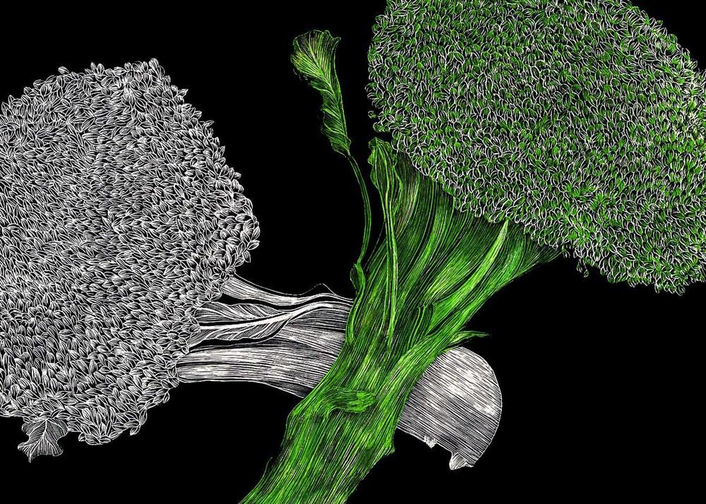#17 Broccoli 7x5 Scratchbord & Triplus Fineliner Markers.jpg