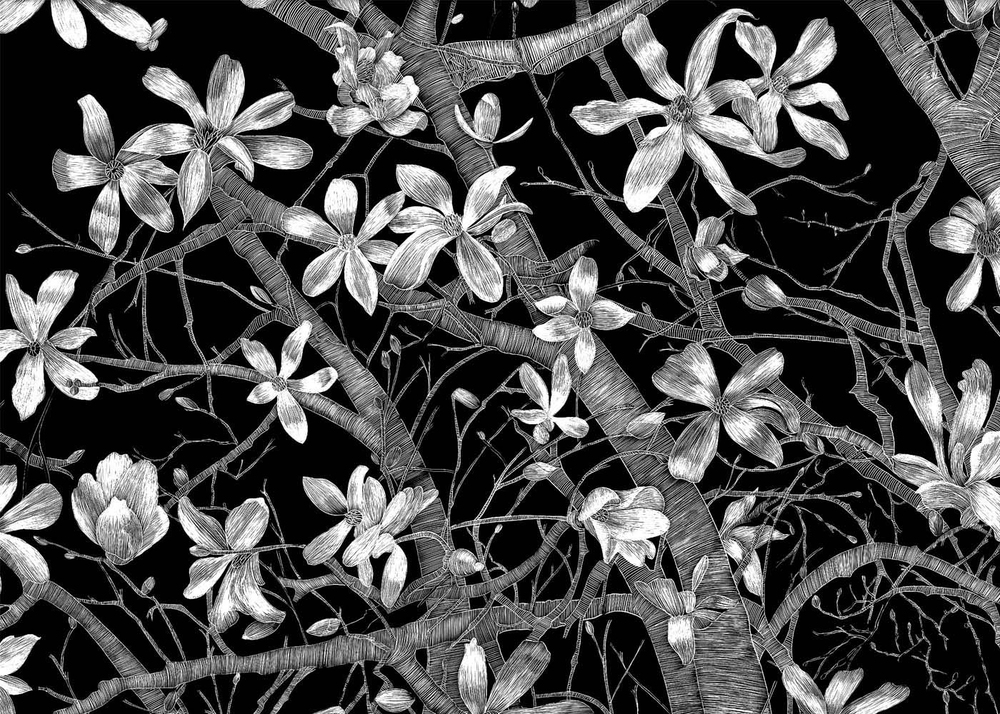 Open Magnolias by Lisa Goesling
