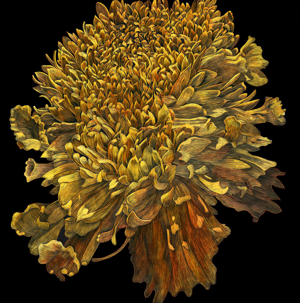 "Marigold by Lisa Goesling 8"" x 8"" 2012"