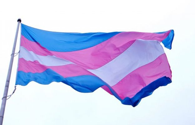 Trangender pride flag