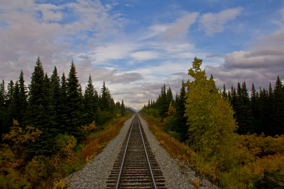 sce.rail.all.cars.fall.jpg
