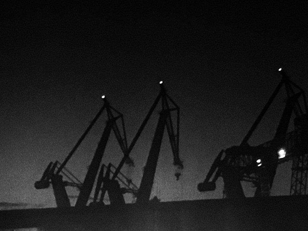 cranes black.jpg