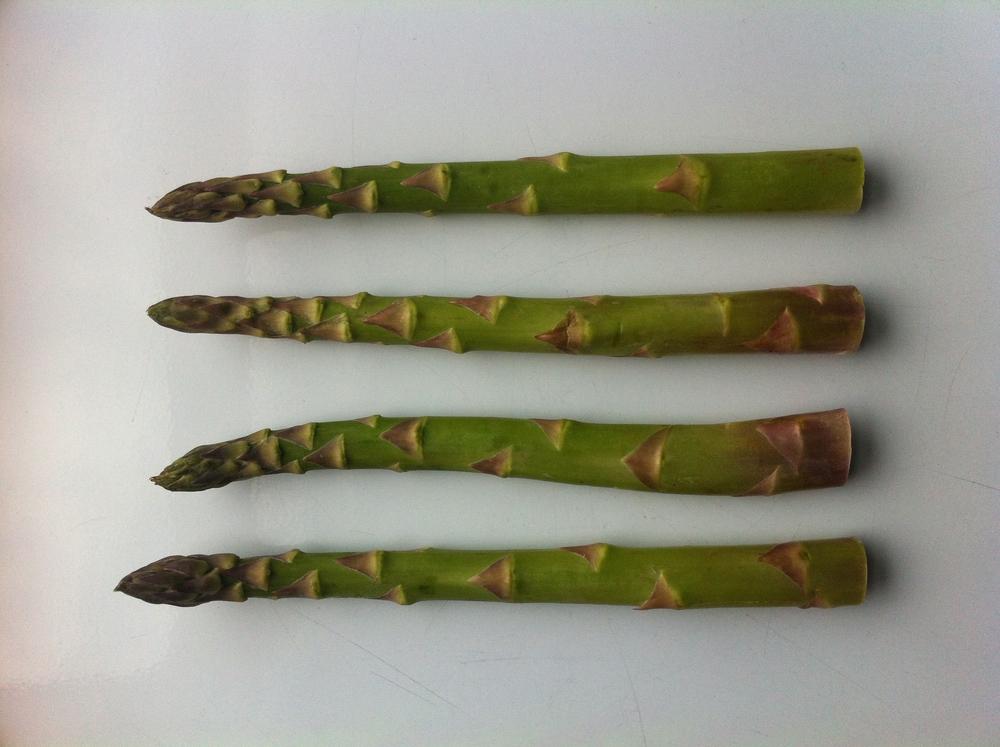 Beautiful Spring Asparagus
