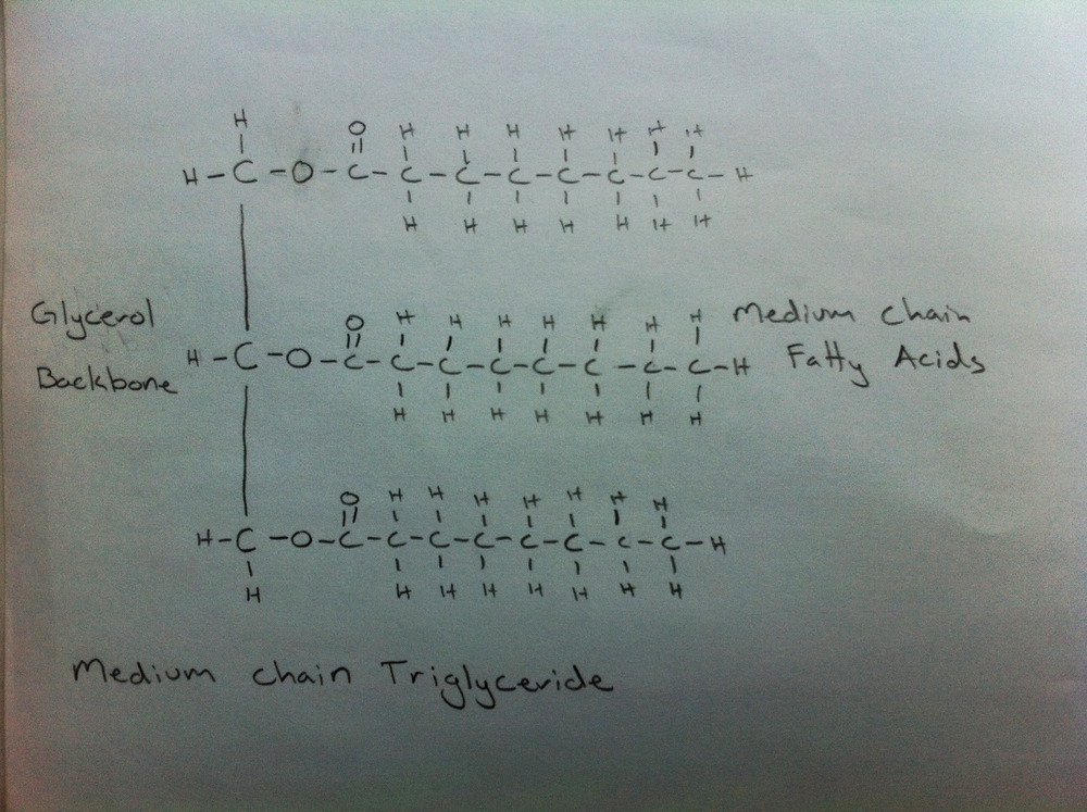 Medium Chain Triglyceride