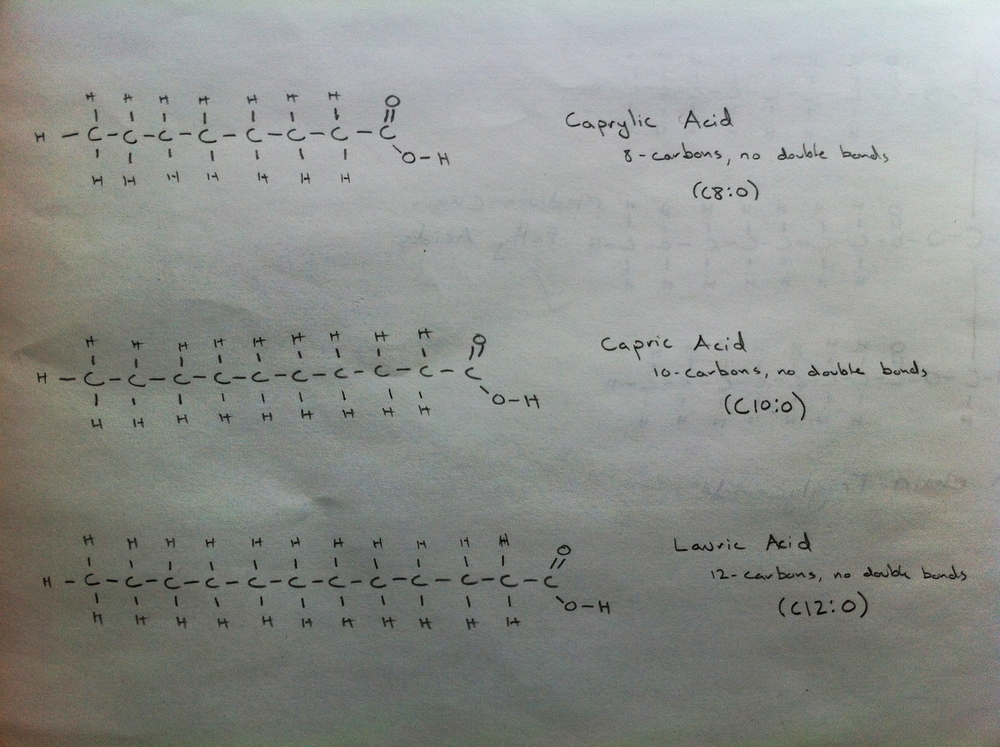 The Three Medium Chain Fatty Acids: Caprylic, Capric and Lauric Acids