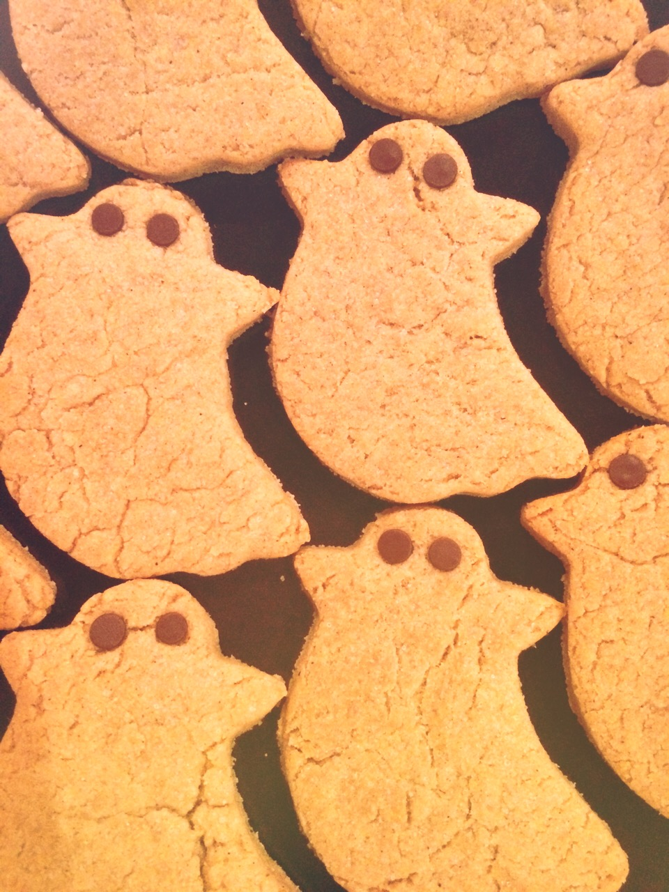 gourdy ghosts - ghost shaped pumpkin spice cookies with chocolate chip eyes VEGAN / GLUTENFREE october 2014