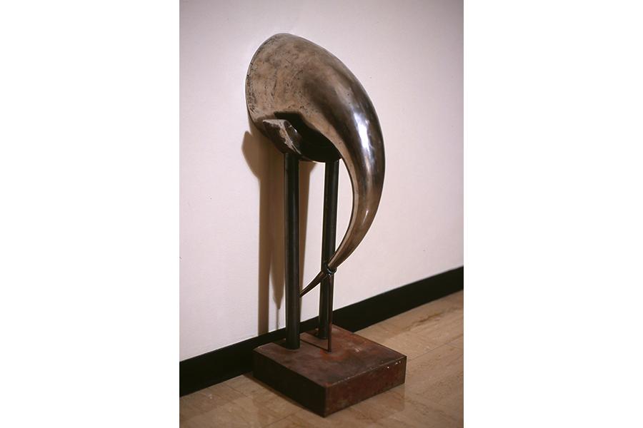 UT horn iron 600x900.jpg