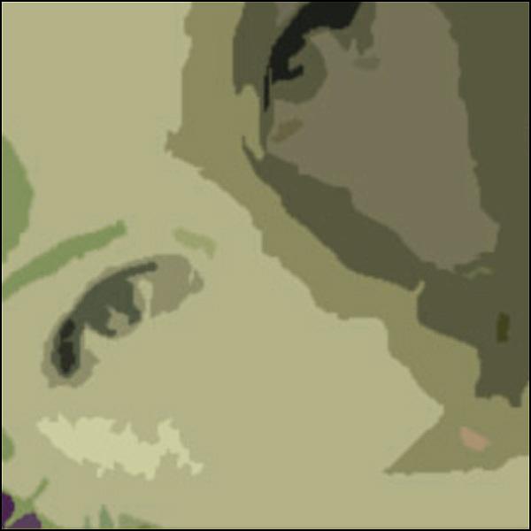 simclose c.jpg