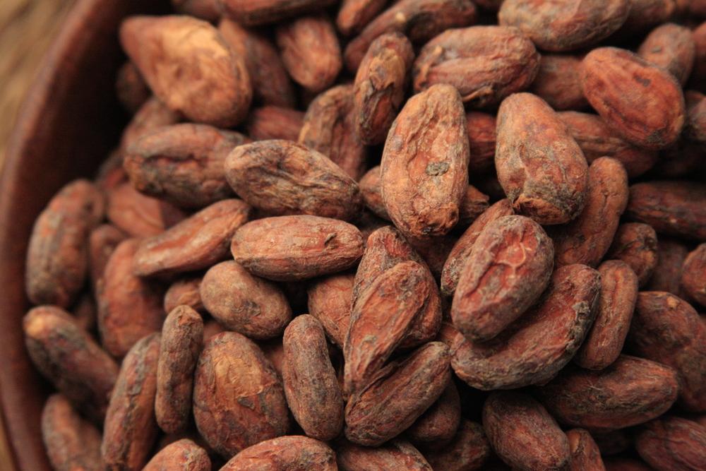 Arriba Nacional Cacao Bean Unroasted