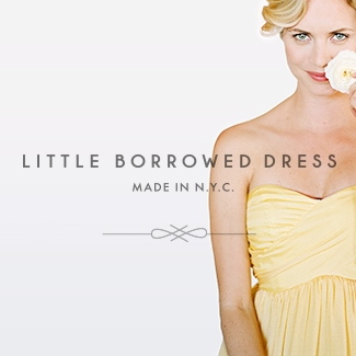 Little Borrowed Dress Brand Development and Collateral