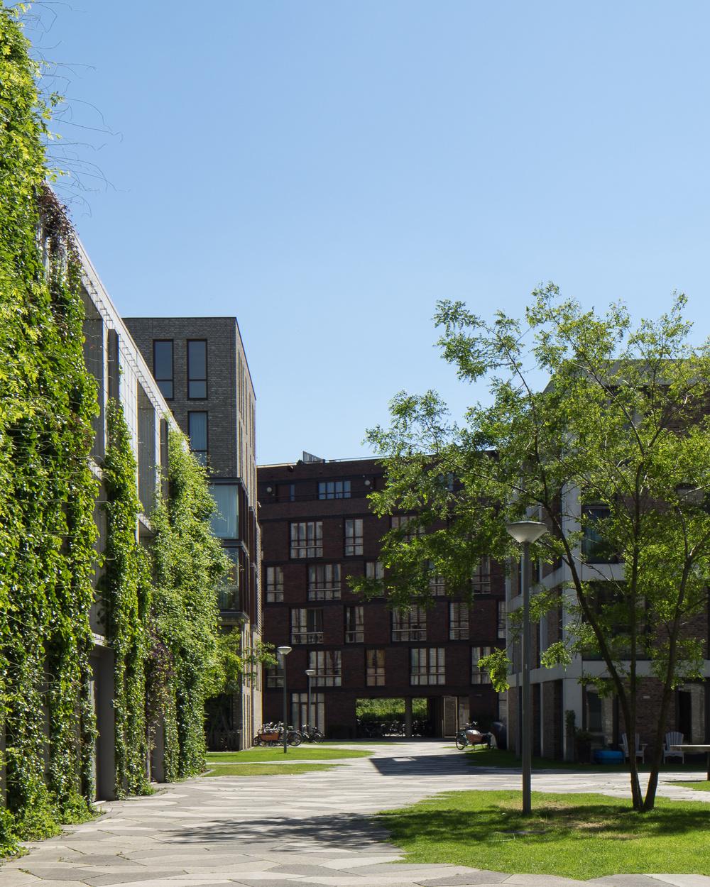 amsterdam-modern-architecture-facade-het-funen-mark-hadden-photography-architectuurfotograaf-091.jpg