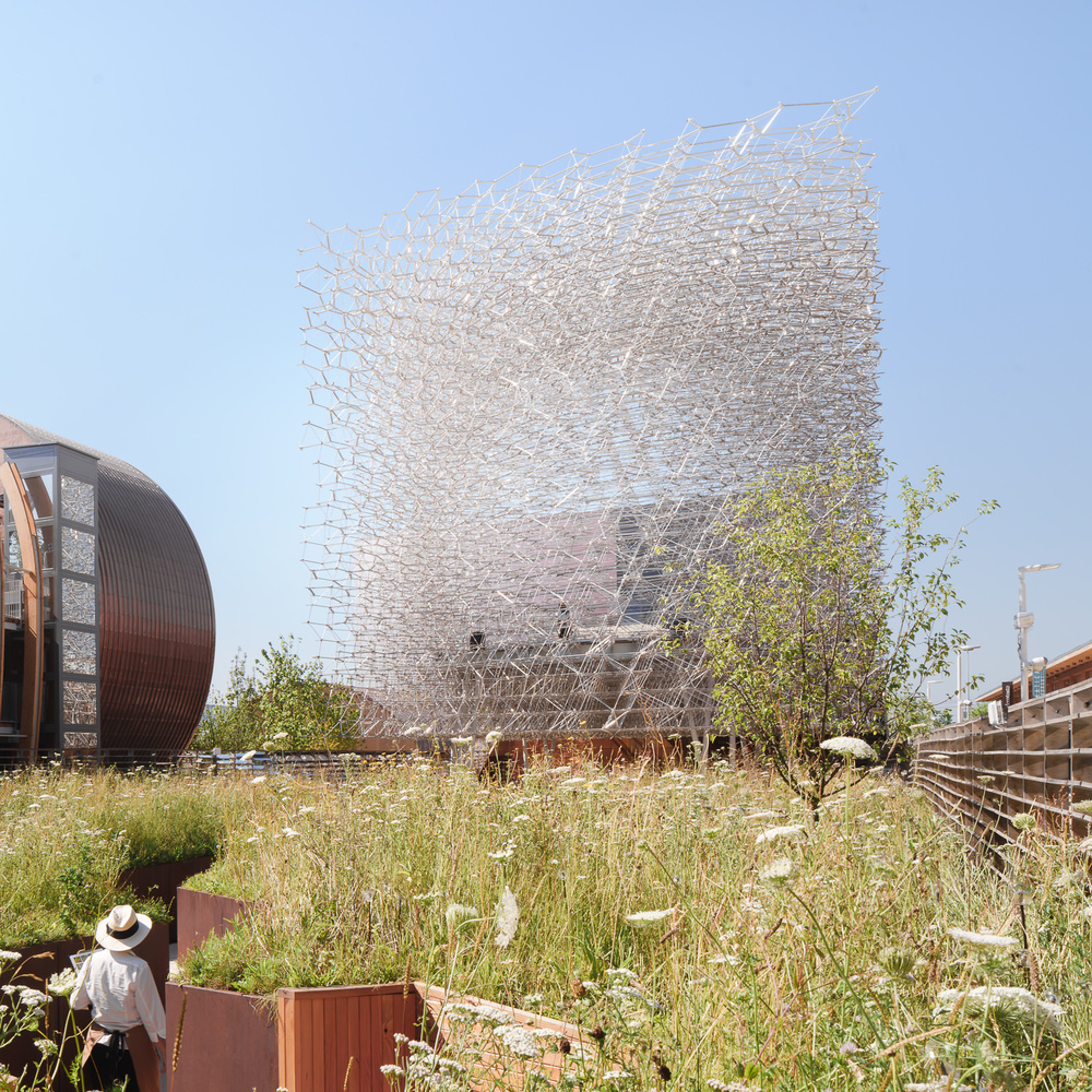 through the meadow at uk pavilion, milan expo, mark hadden