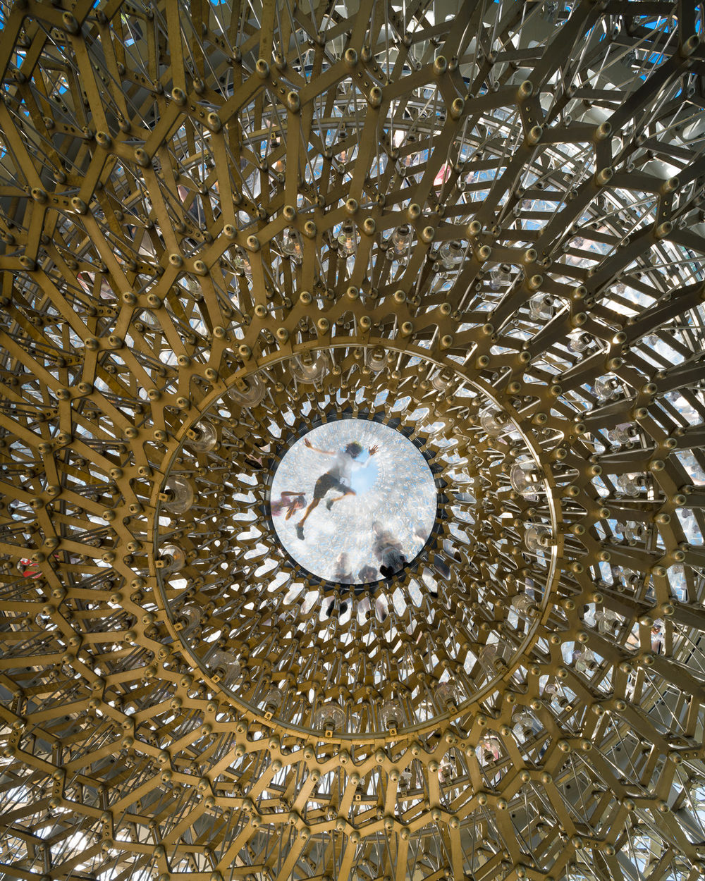 Underneath The Hive At Kew. Mark Hadden Architecture Photographer