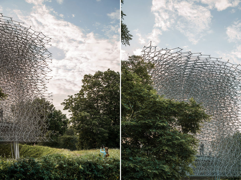 Viewing The Hive, Kew Gardens. Mark Hadden Architecture Photographer