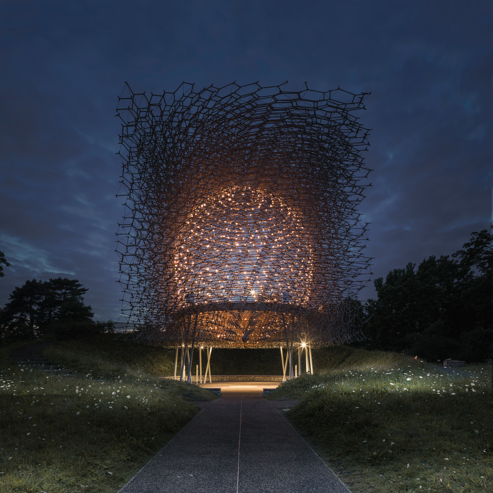 Night time at The Hive, Kew Gardens. Mark Hadden Architecture Photographer