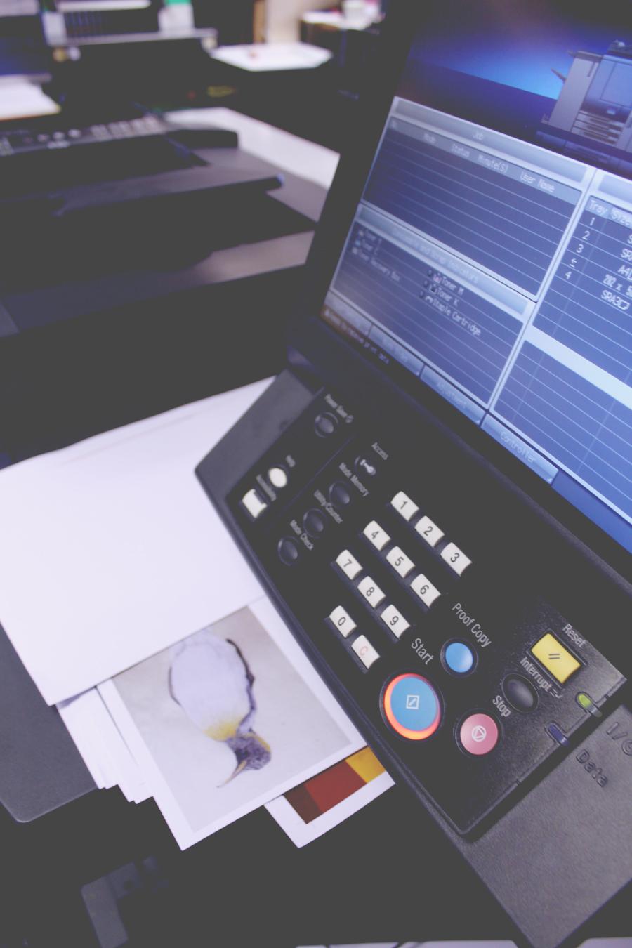 Printer_WEB.jpg