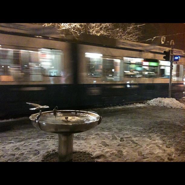 Passt super schön zur momentanen Stimmung in Zürich. Schneeparadies. Bild von evrens