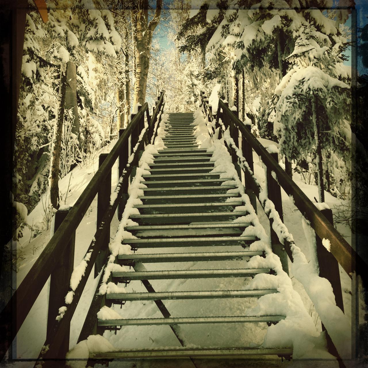 zuerilove ging wandern im winter wonderland am üetliberg