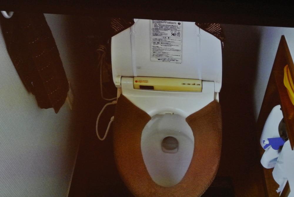ronja-sakata-toilette