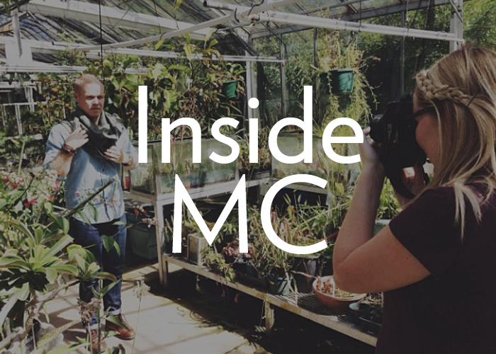 InsideMC.jpg