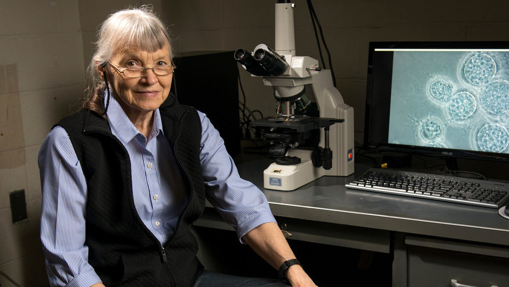 Dr. Joyce Longcore. Photo courtesy of the University of Maine.