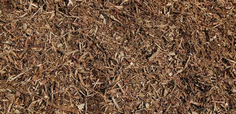 native-tree-mulch.jpg