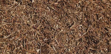 native-tree-mulch.jpg
