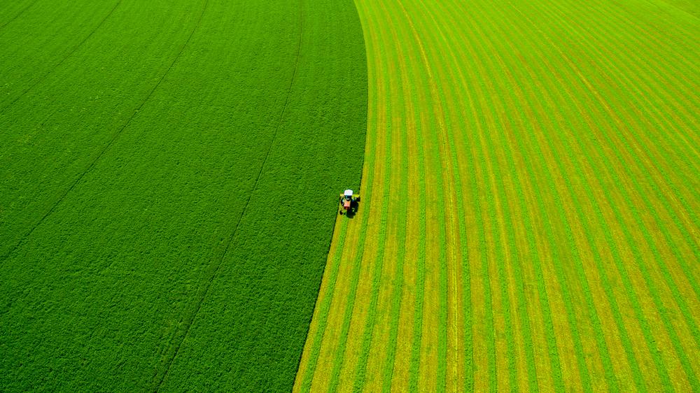 Drone Shot, Hay Cutting