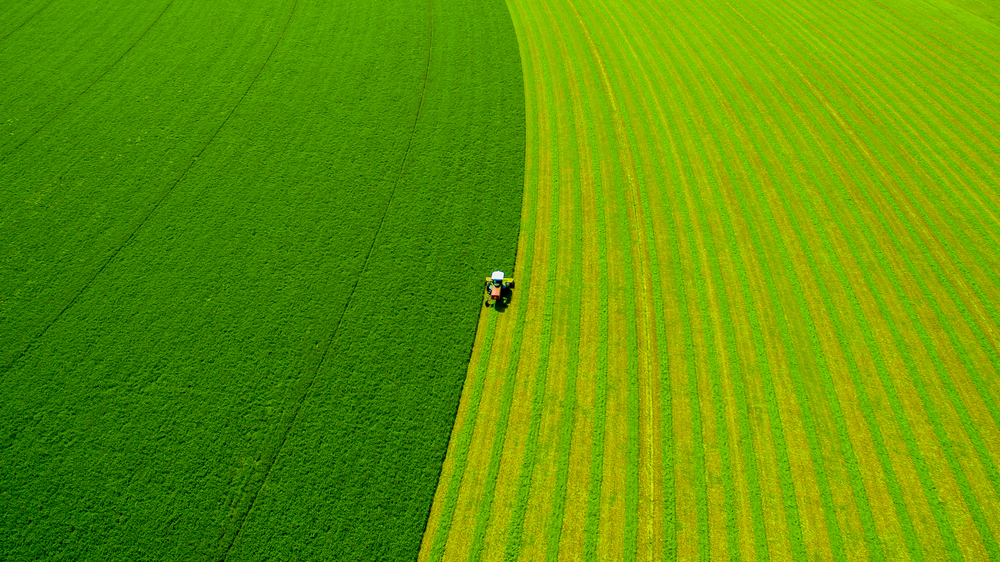 Drone Shot, Hay Cutting