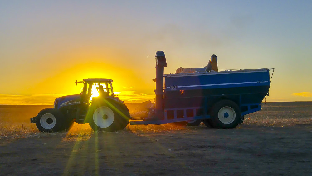 Harvest Sunset 2016