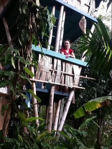 Treehouse hotel in Puerto Rico