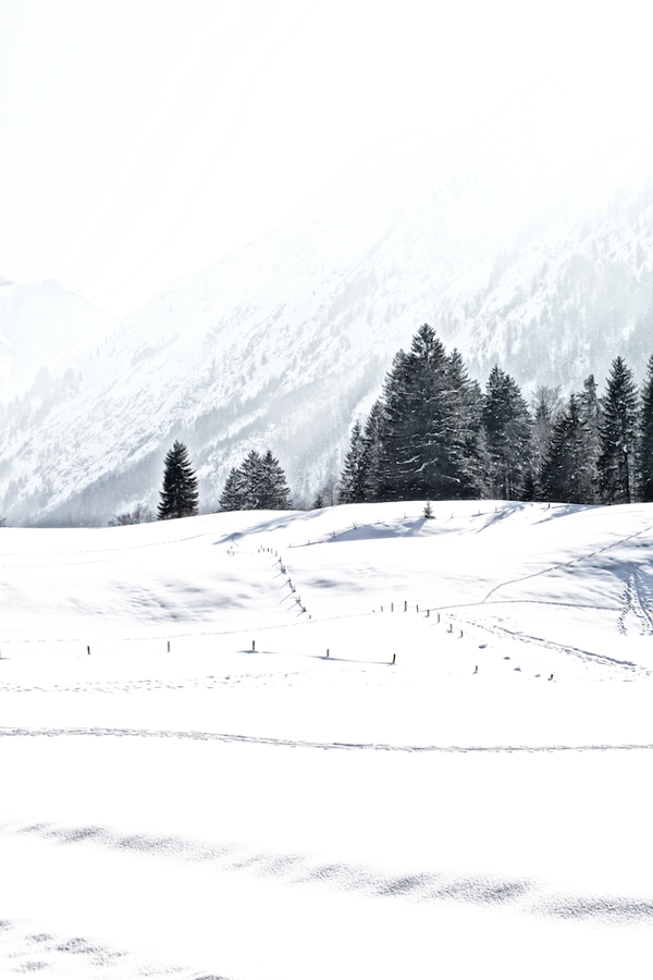 winter13_by_FabianOelkers_03.png