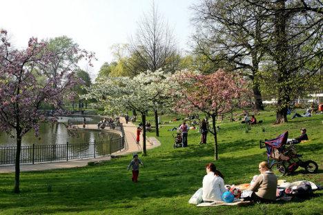 Volkspark - Friedrichshain