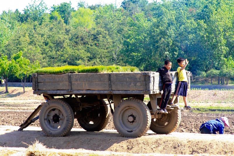 north-korean-farm-kids-trailer