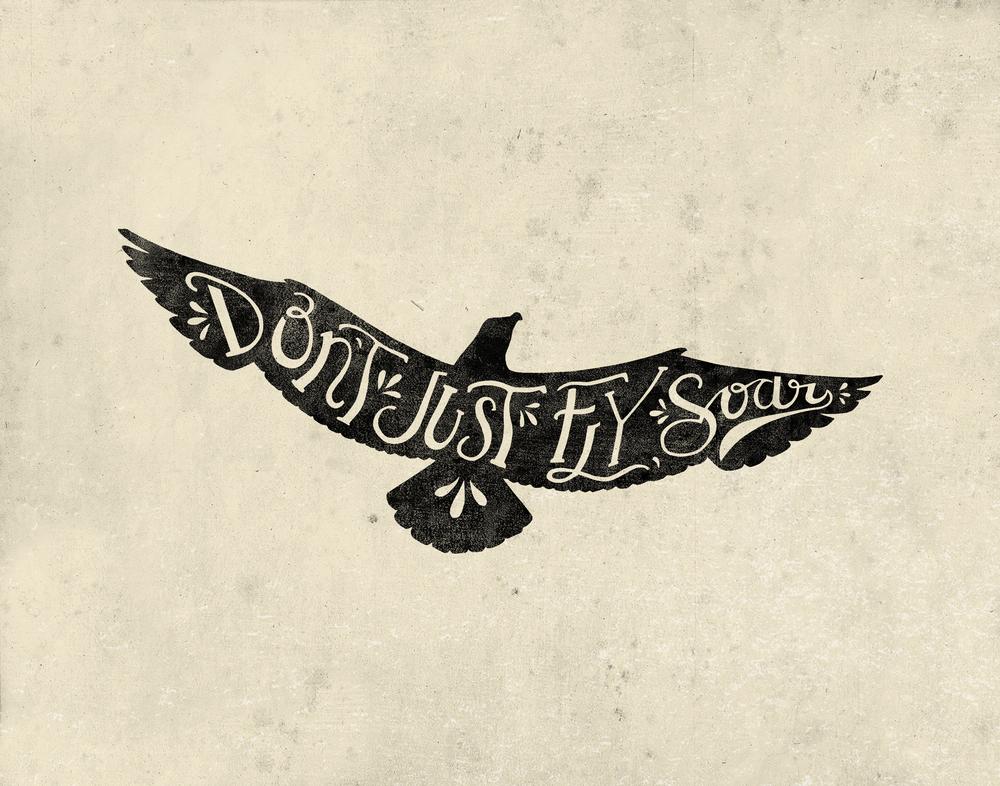 Fly_Soar.jpg