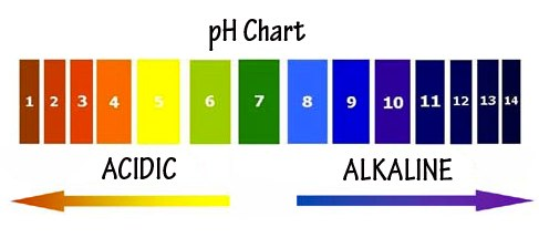 images of acidic pH - Google Search