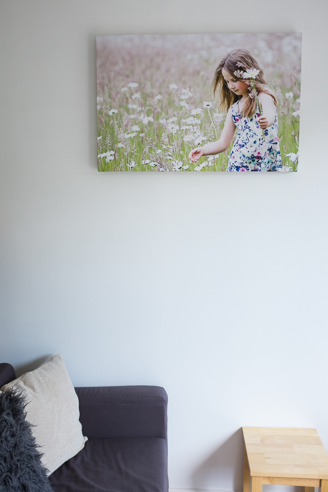 """The size of this canvas is 30"""" x 20"""" so it's a more substantial display."""