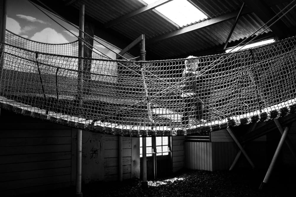 Ropebridge  - Amerton Farm, Stafford - August 2014