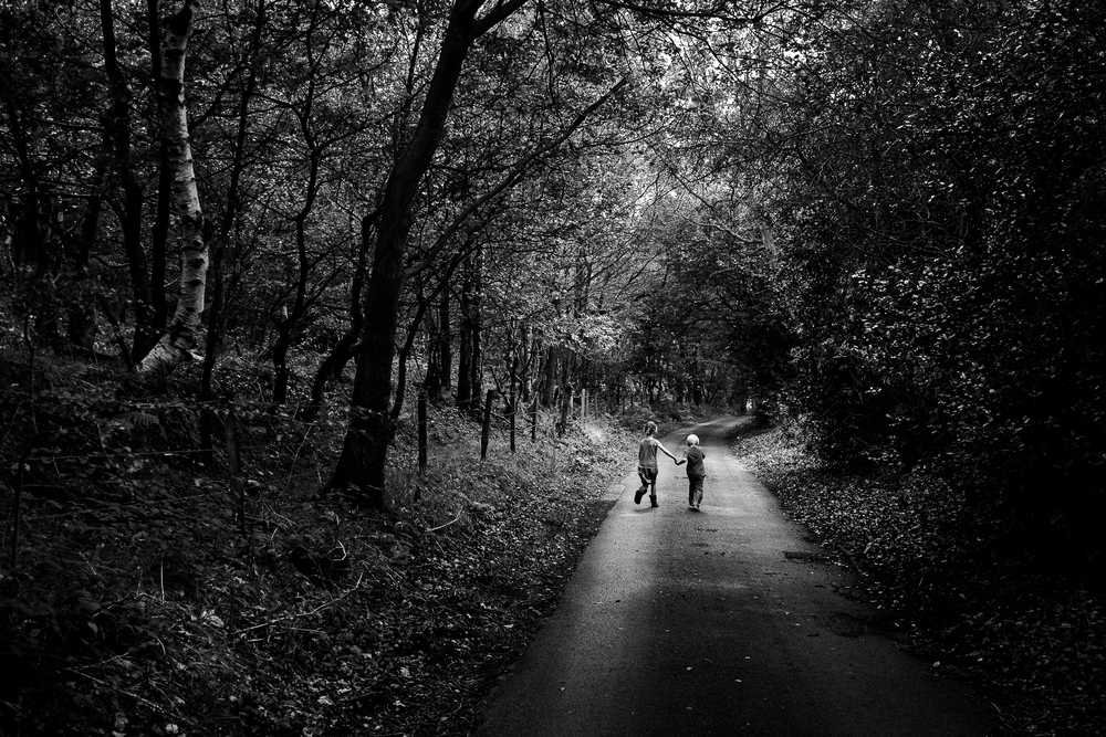 Lane  - Dilhorne, Staffordshire - September 2014