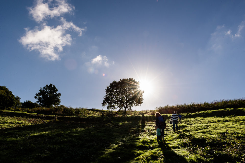 Documentary Family Photography at Clent Hills, Worcestershire Family Lifestyle Photography Woods Outdoors Trees Flying Kite - Jenny Harper-8.jpg