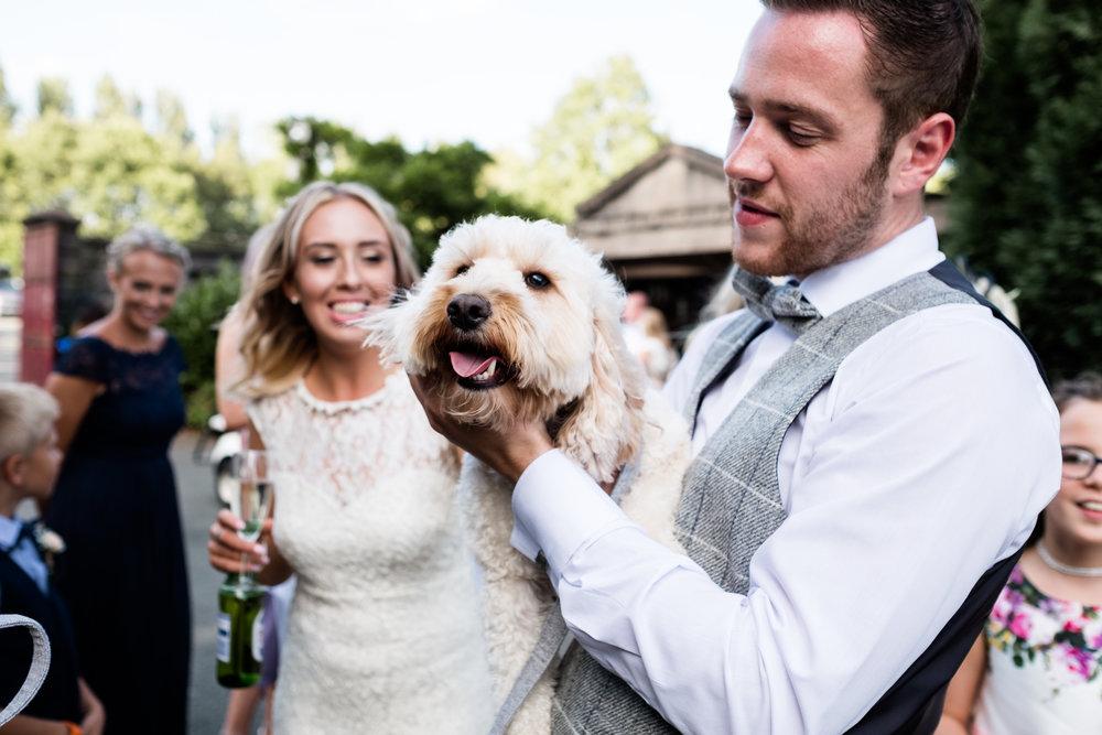 Summer Documentary Wedding Photography at Consall Hall Gardens Outdoor Ceremony Cockapoo dog - Jenny Harper-55.jpg